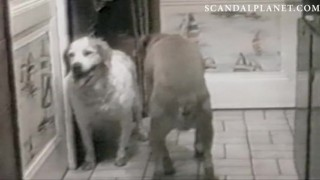 Smulders sex scene